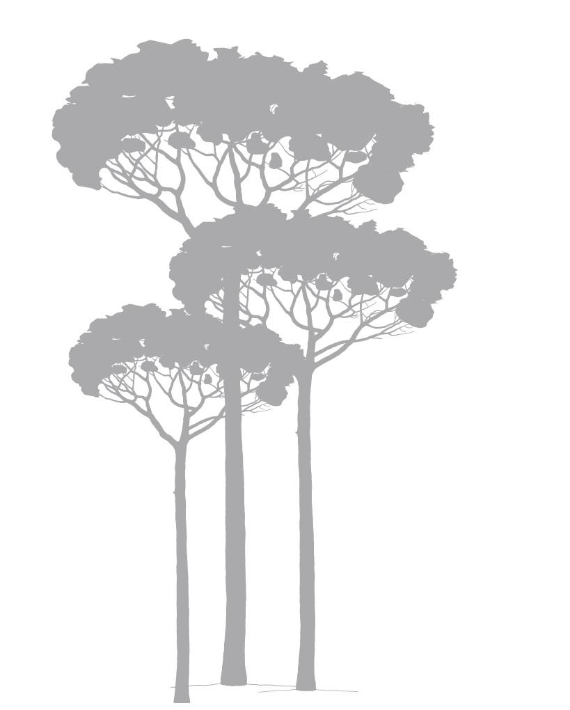 La ressource bois est utilisée à 100% dans le Groupe