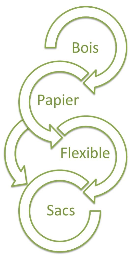 Gascogne, un groupe intégré bois, papier, emballage